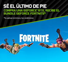 BUNDLE GEFORCE FORTNITE*
